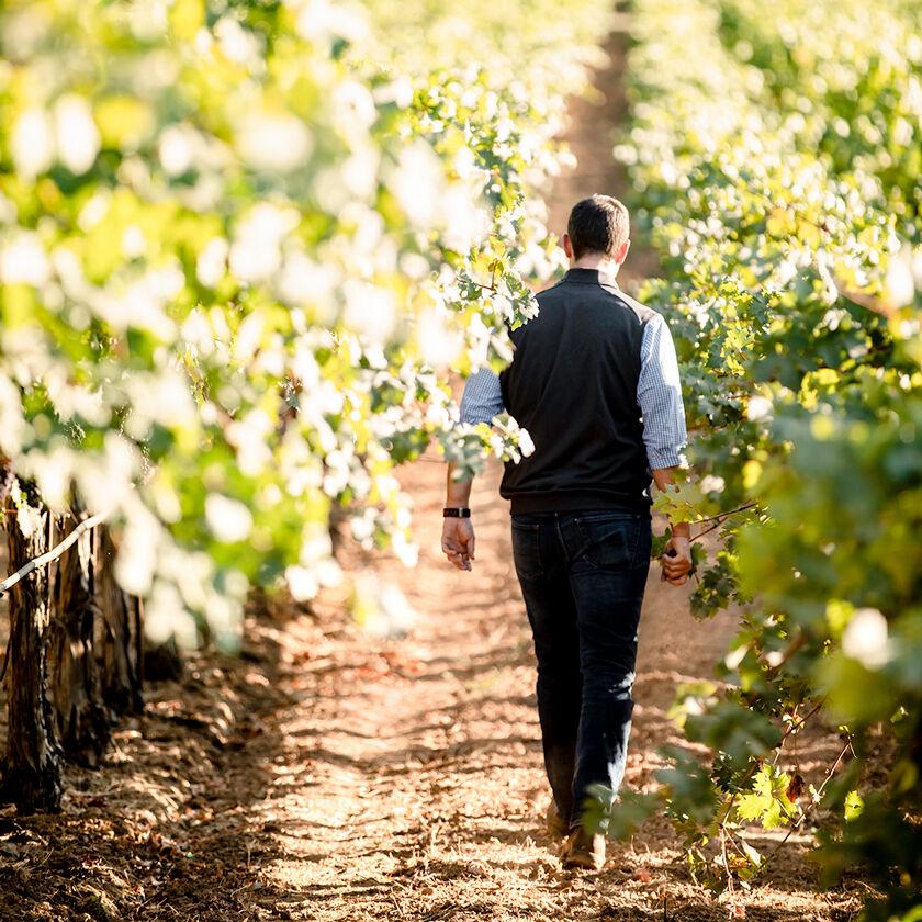 Winemaker Trevor Durling Walking in Vineyard