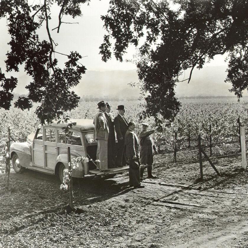 Historical Photograph of Beaulieu Vineyard